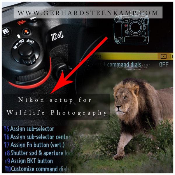Nikon setup-1